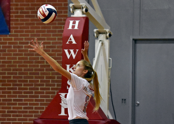 Hawks fall in NAIA tri-match
