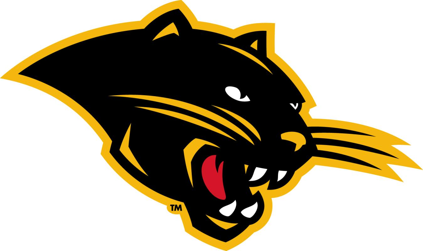 the gallery for gt panther football logos