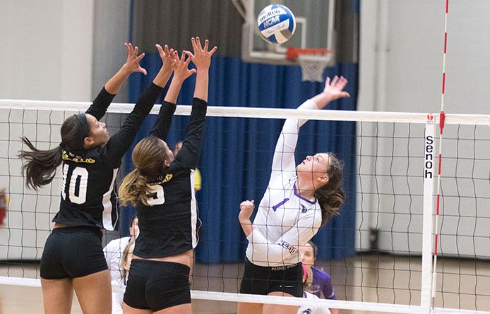 Women's Volleyball Falls Twice to 2016 NCAA Teams at Gannon/Mercyhurst Tourney