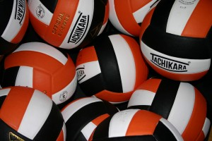 MCAC Volleyball Week 2:  Northern Division Players of the Week