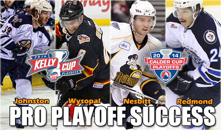 Ferris State Hockey Well-Represented Deep Into AHL & ECHL Playoffs