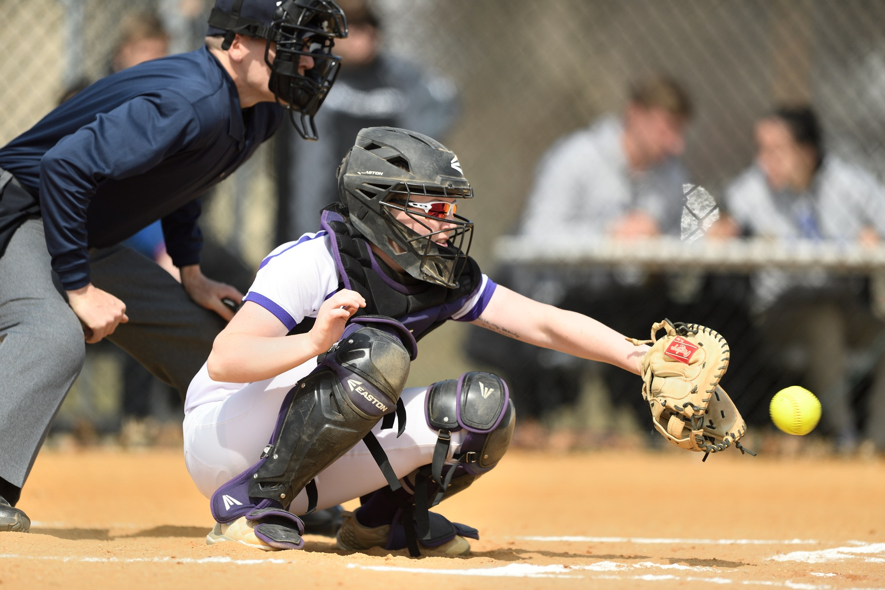 Purple Knights Suffer First Two ECC Softball Setbacks Of The Season At LIU Post