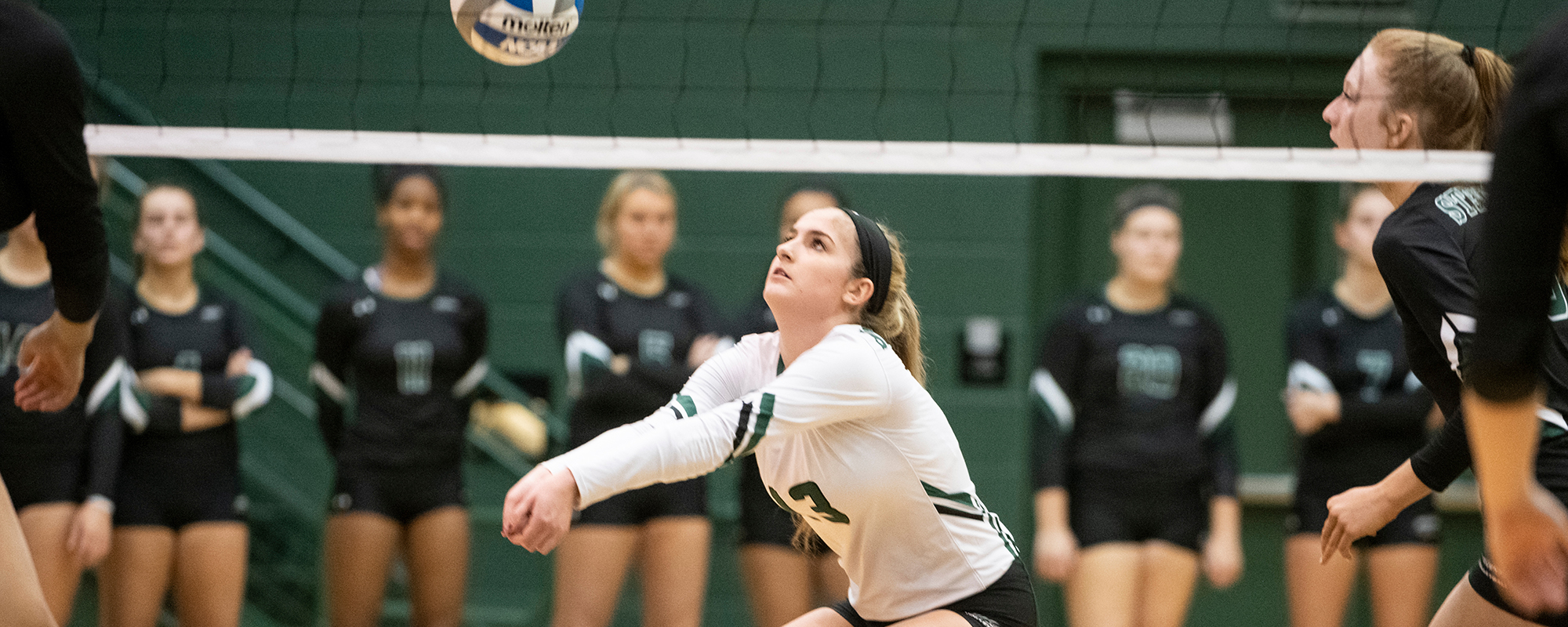 Mustangs Sweep Penn State Harrisburg, Wesley in Tri-Match