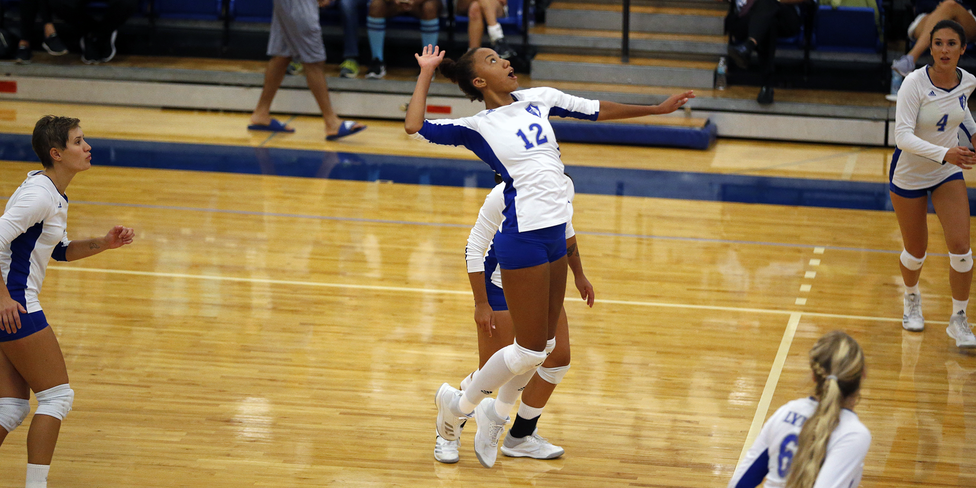 Volleyball Overwhelms Rollins in Three-Set Victory