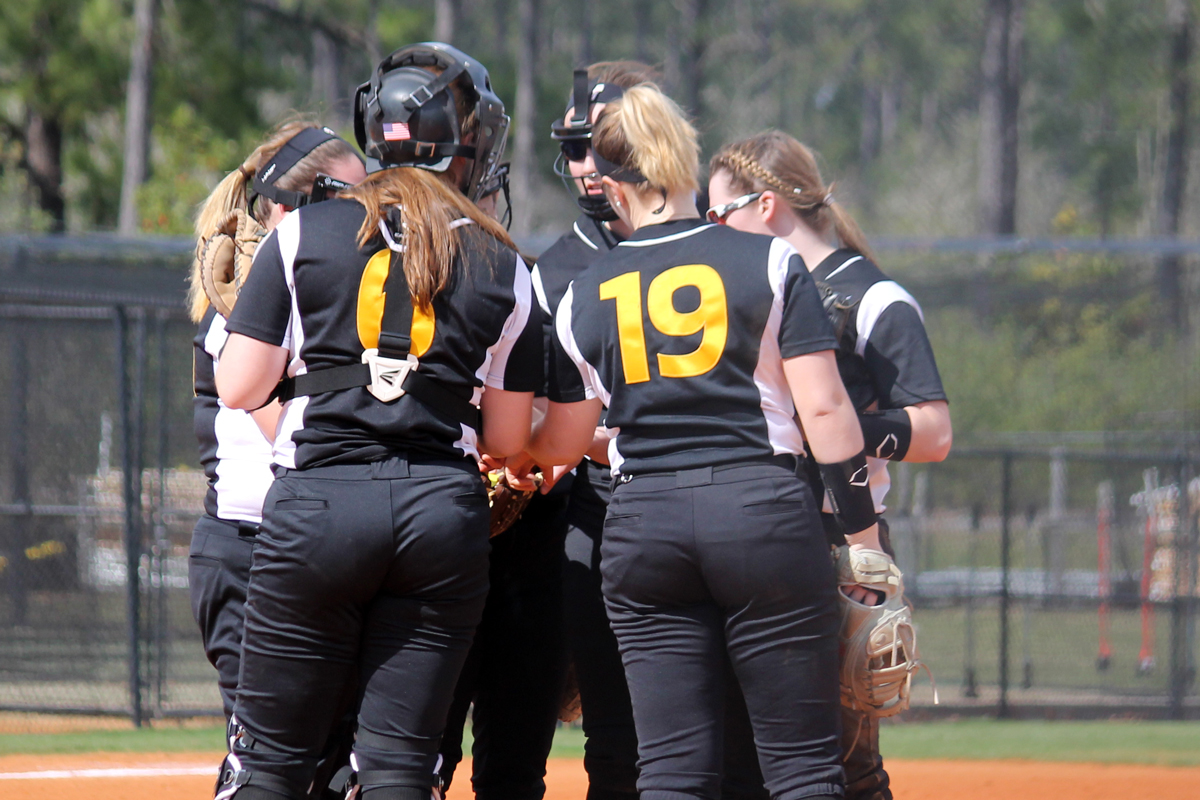 Softball Falls To UNE In League Opener