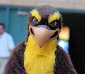 """Falcon Madness"" Event Set For Friday"