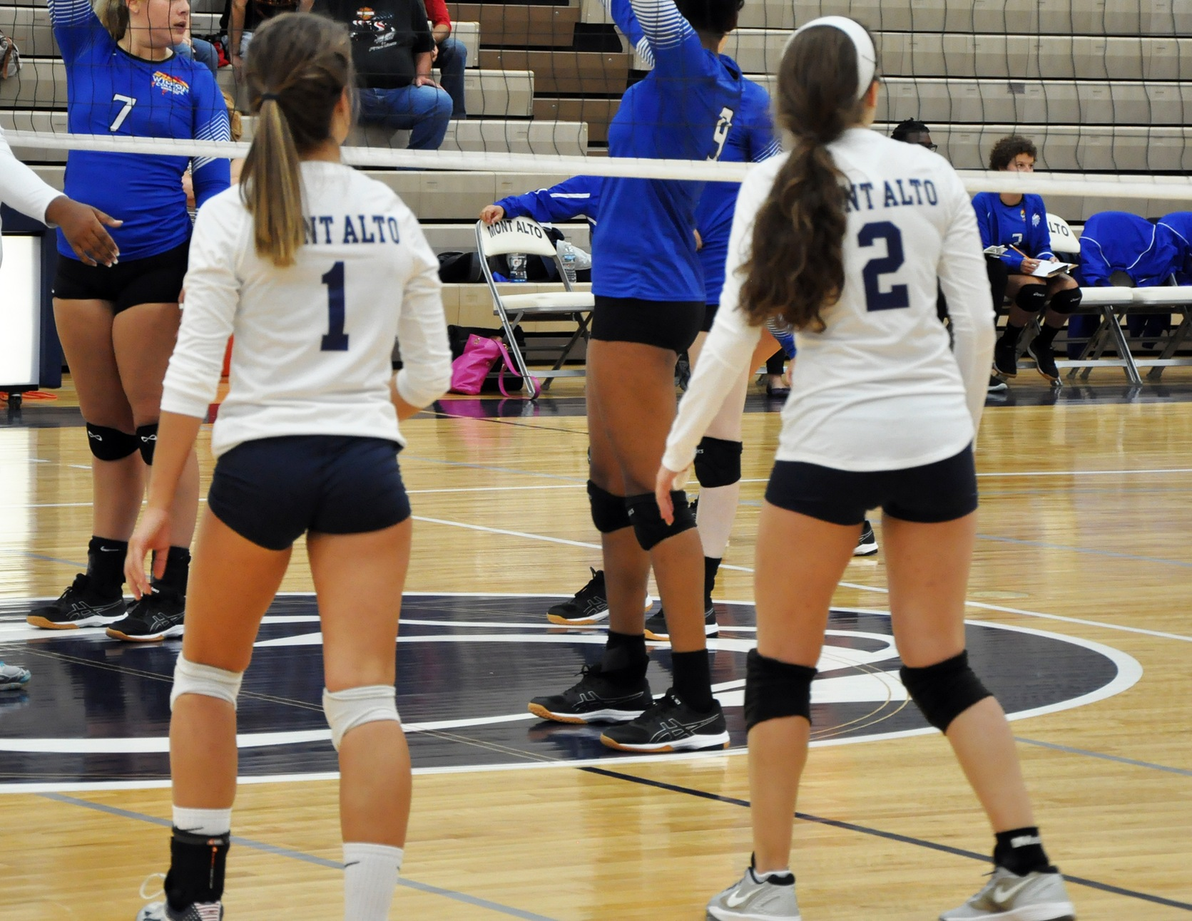 Volleyball Splits In Weekend PSUAC Quad Match