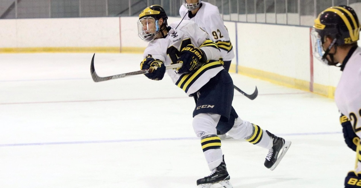 WOLVERINES CRUISE TO 6-1 WIN OVER BEARS