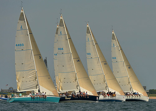 Bears Race Glory at American YC Fall Series