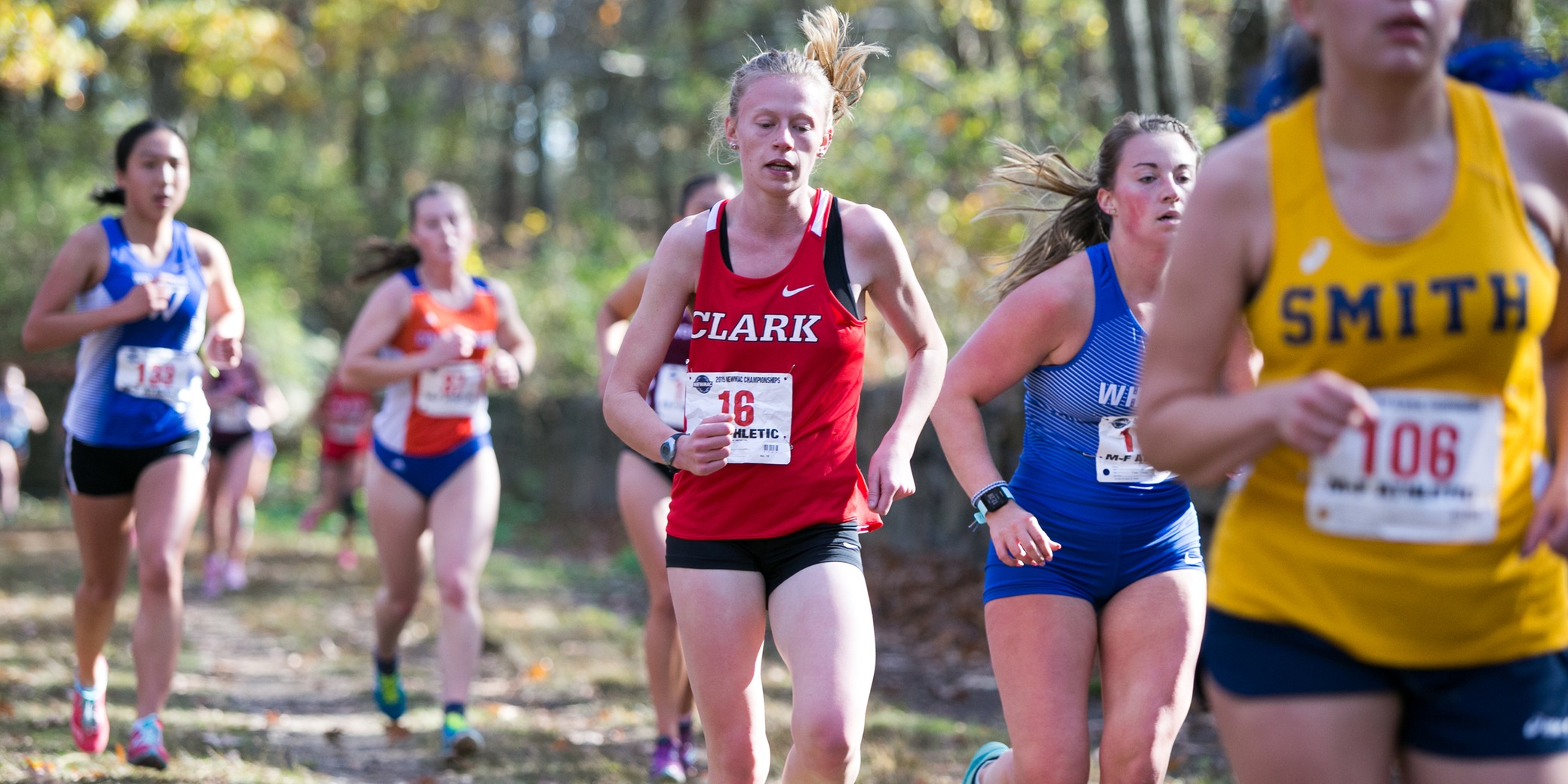 WXC: Cougars Finish 11th at NEWMAC Championships
