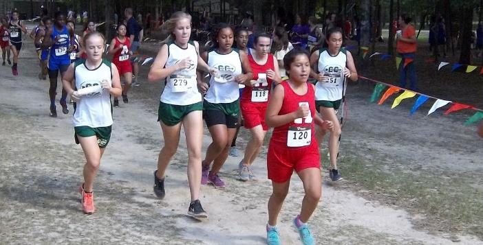 Ware Cross Country Teams Compete in Hazlehurst