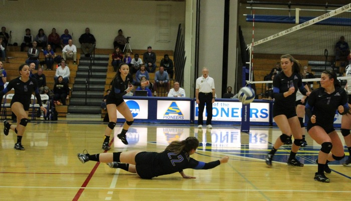 Volleyball Fights On to Championship Appearance