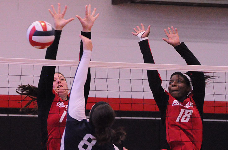 Volleyball: Panthers split matches at Stormy Petrel Challenge