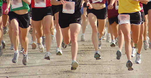 Familiar courses await Tech cross country runners in 2010