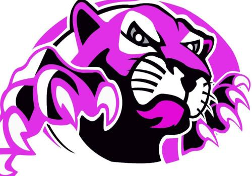 Pink Out Basketball Game