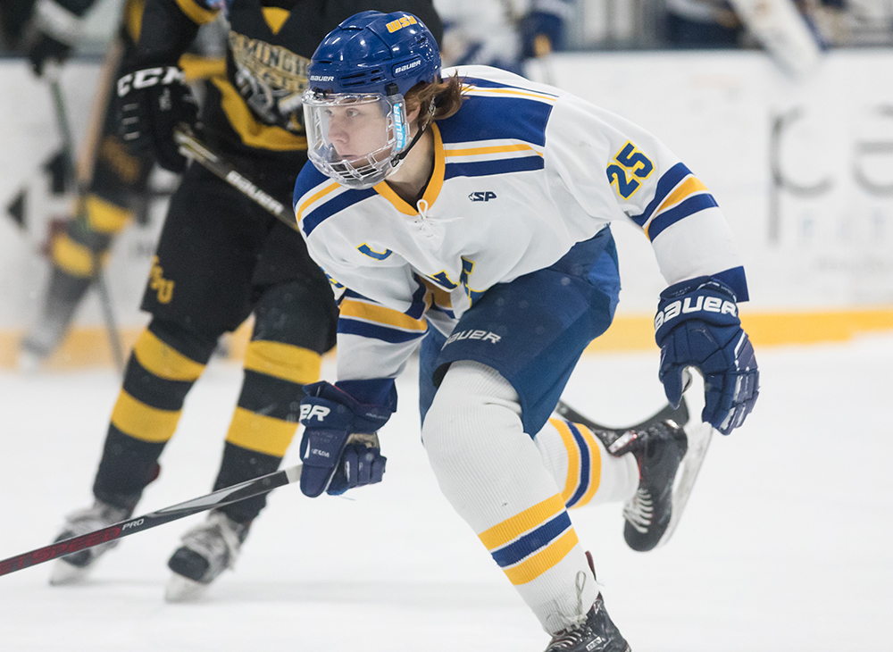 Men's Ice Hockey Blanks Framingham State