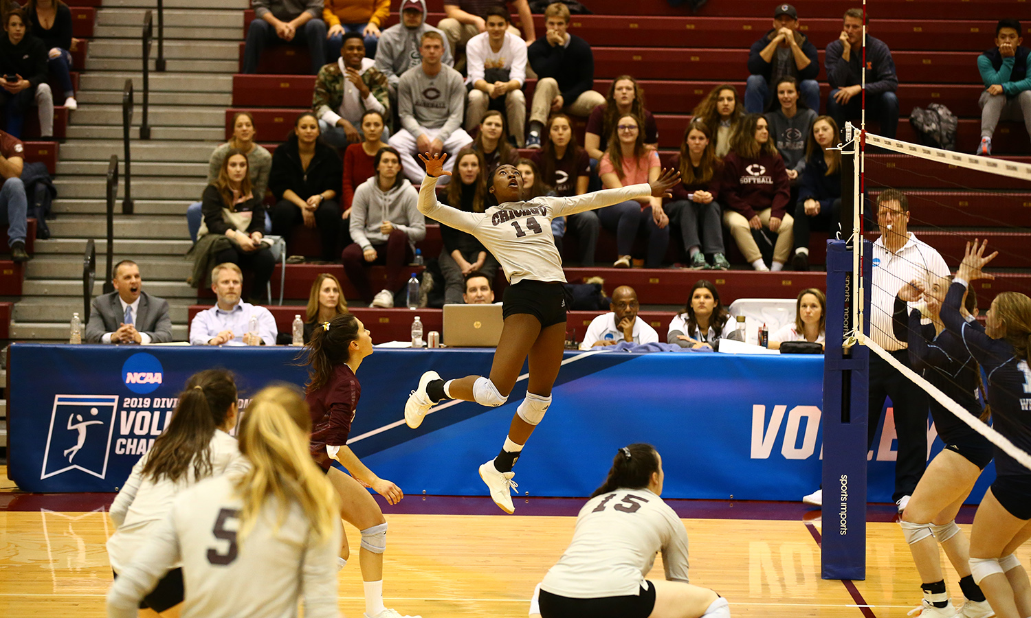 Maroon Volleyball Sweeps Westminster in NCAA Opener