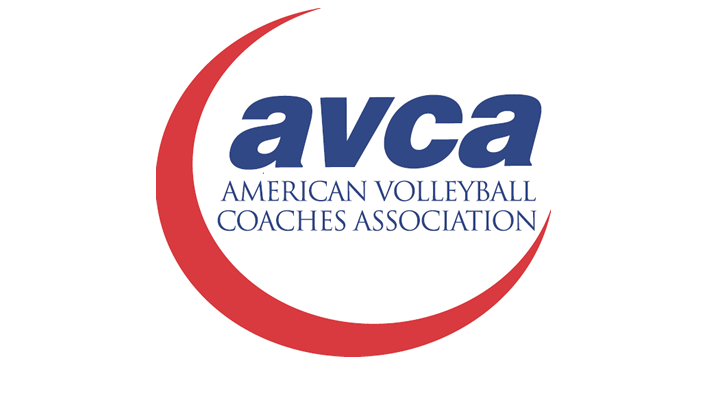 Blugold Volleyball Receives Team Academic Award
