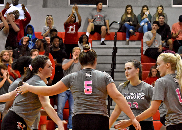 Hawks end season in USA South Tournament quarterfinals