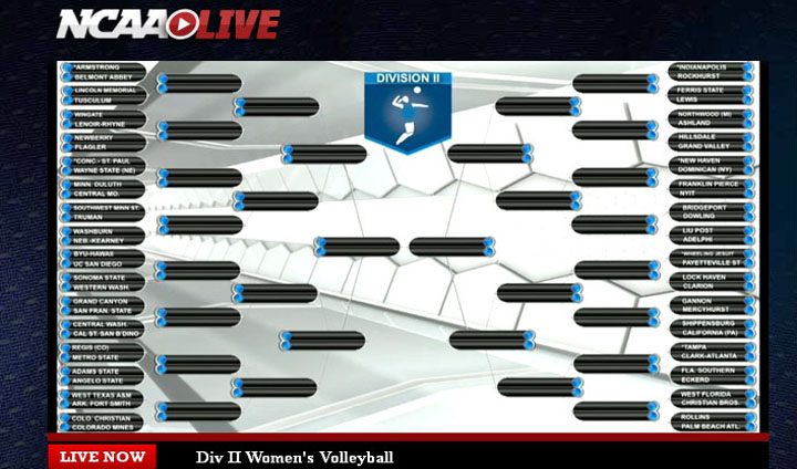 Bulldog Volleyball Receives NCAA Division II Tournament Berth!