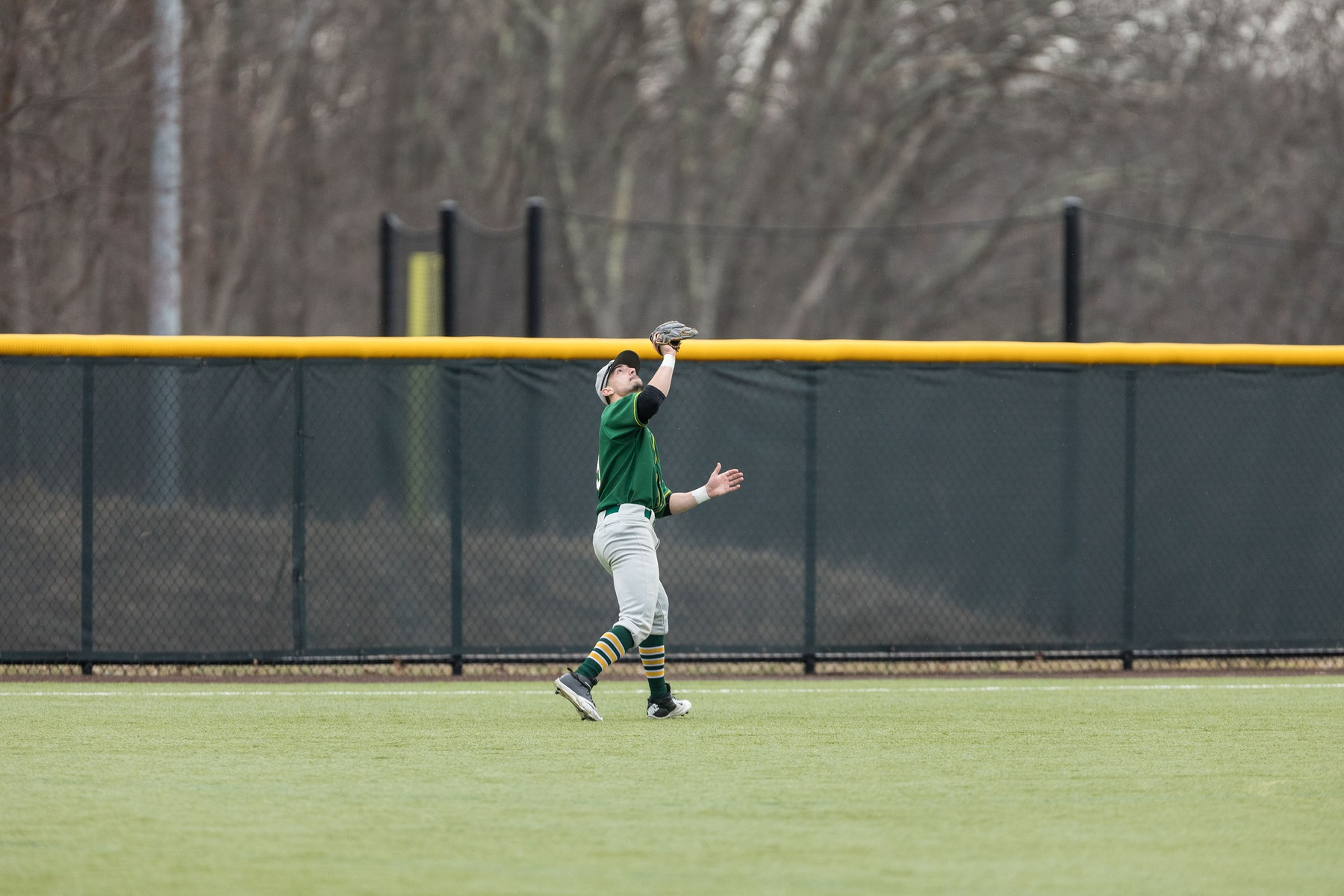 Falcons Sweep Bears in MASCAC Doubleheader