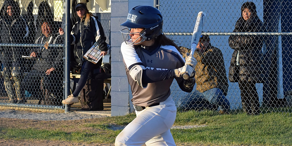 Softball drops two to York at home