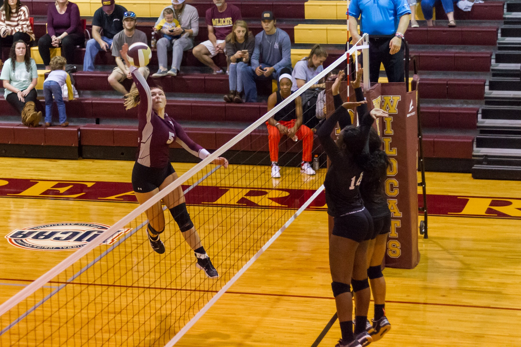 Pearl River sweeps Judson College for third time