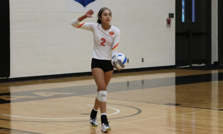 Lady Suns Dominate Richland On Sophomore Night