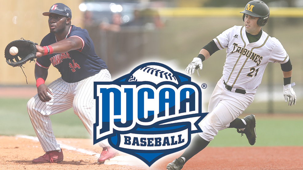 2017 NJCAA Division II Baseball All-America Teams