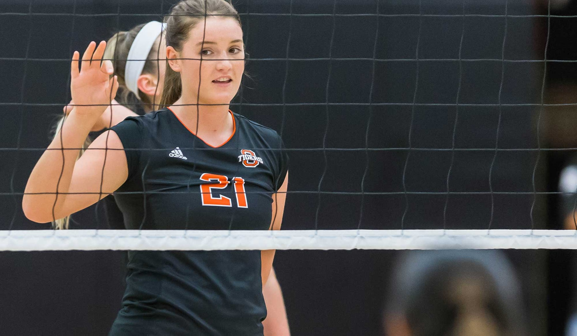 Tigers Fall to Sagehens