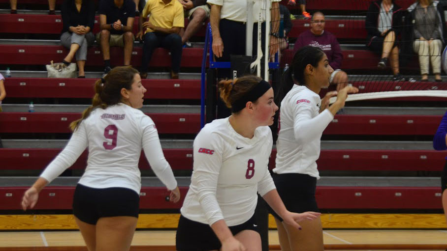 Devils Volleyball Stumbles Against Wilmington