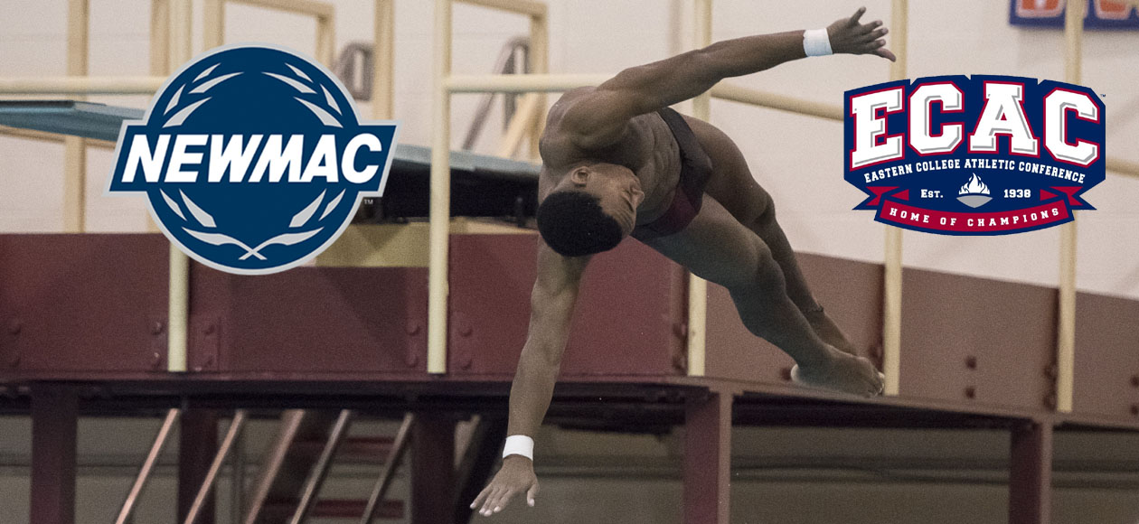 Stewart Selected as NEWMAC and ECAC Men's Diver of the Week