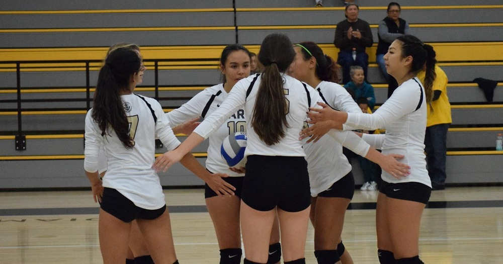 COM Volleyball Completes Grueling Opening Week with 3-0 Loss To Lane Community College