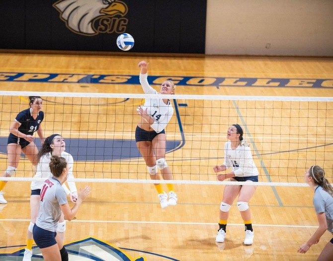 Seniors Standout on Women's Volleyball Senior Night