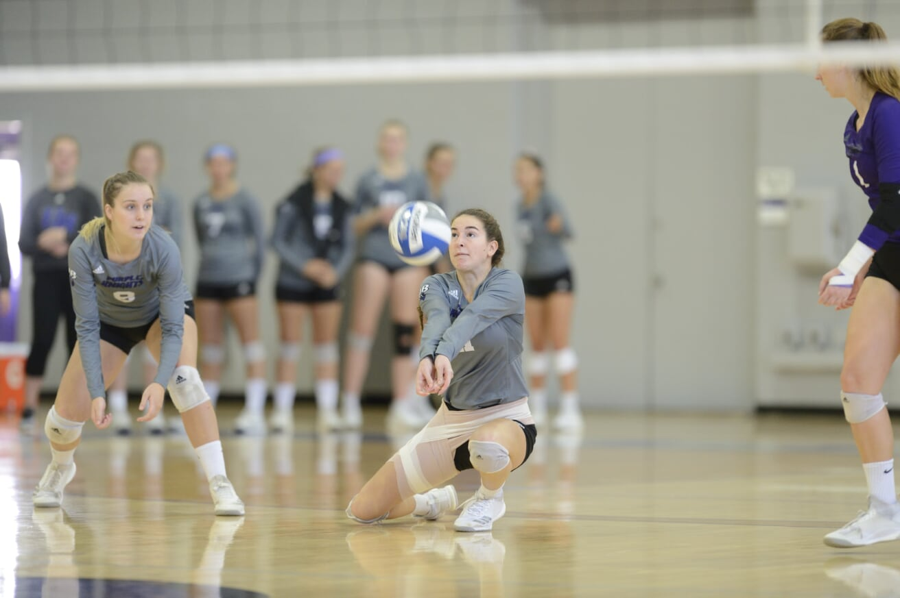 Volleyball Falls In 2018 Home Finale To Daemen In ECC Play