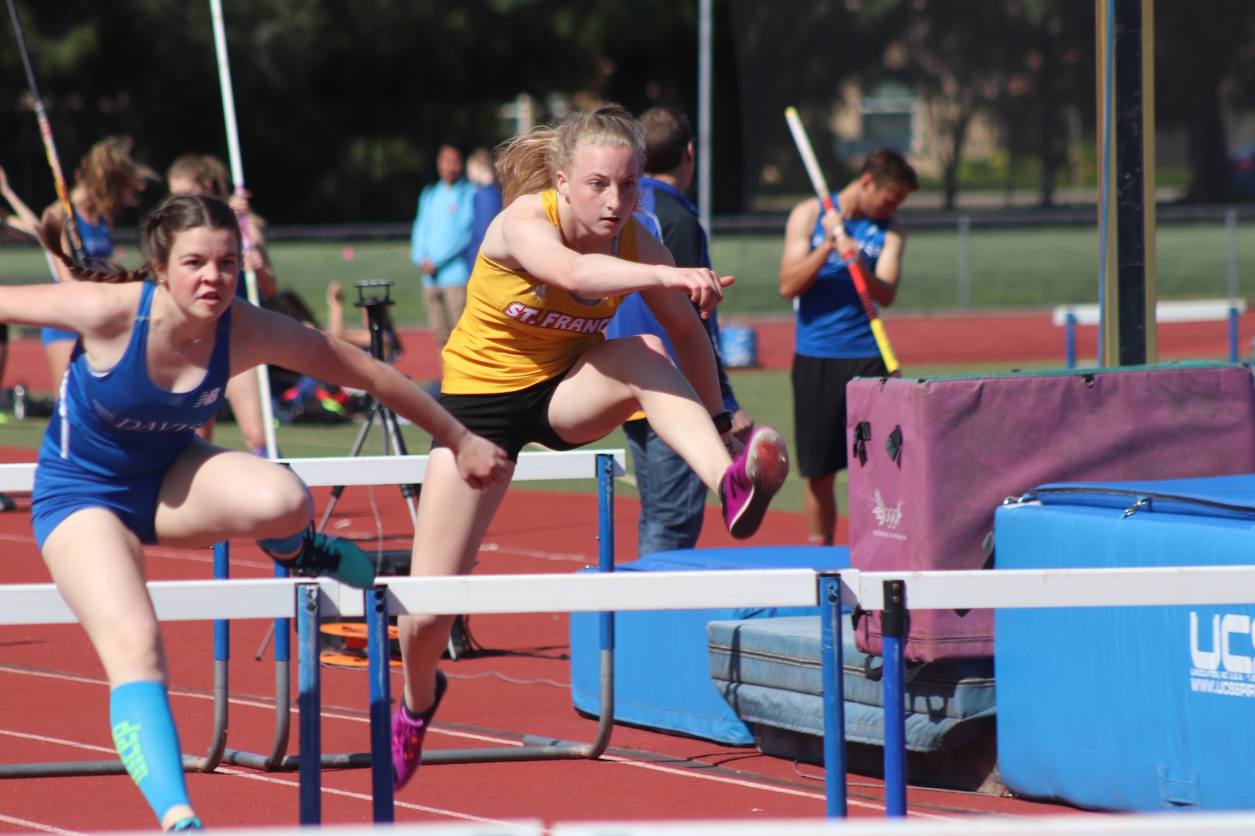 Track and Field Sweeps Davis and Elk Grove