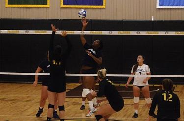 Ebony Sanders Named PSUAC Volleyball POTW