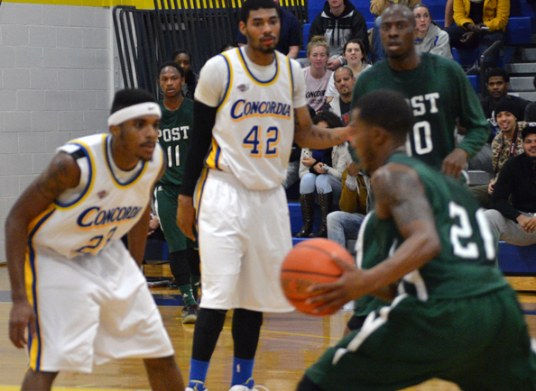 Clippers Defeated on the Road, 73-42, against New Haven