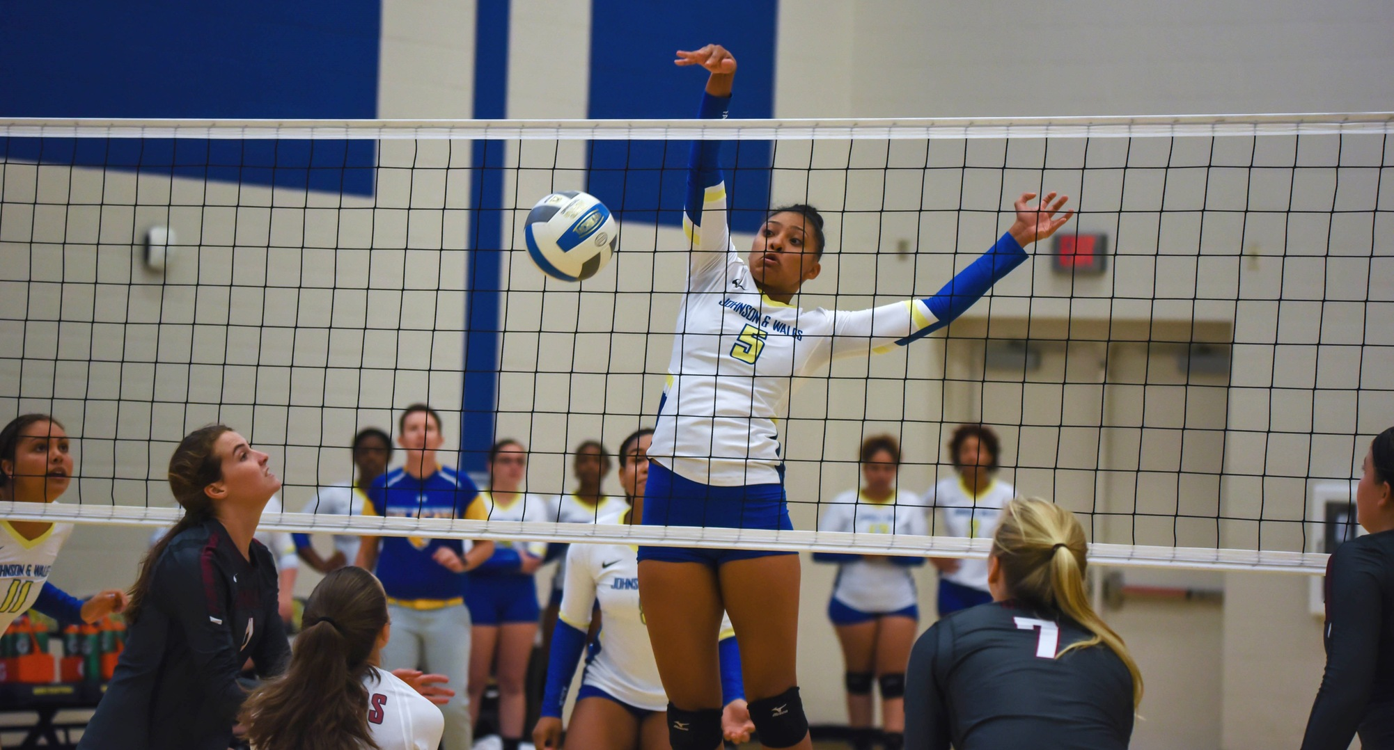 Volleyball Comes Up Short On Road