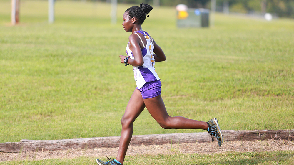TTU cross country heads south for Blazer Classic, final meet before OVC Championships