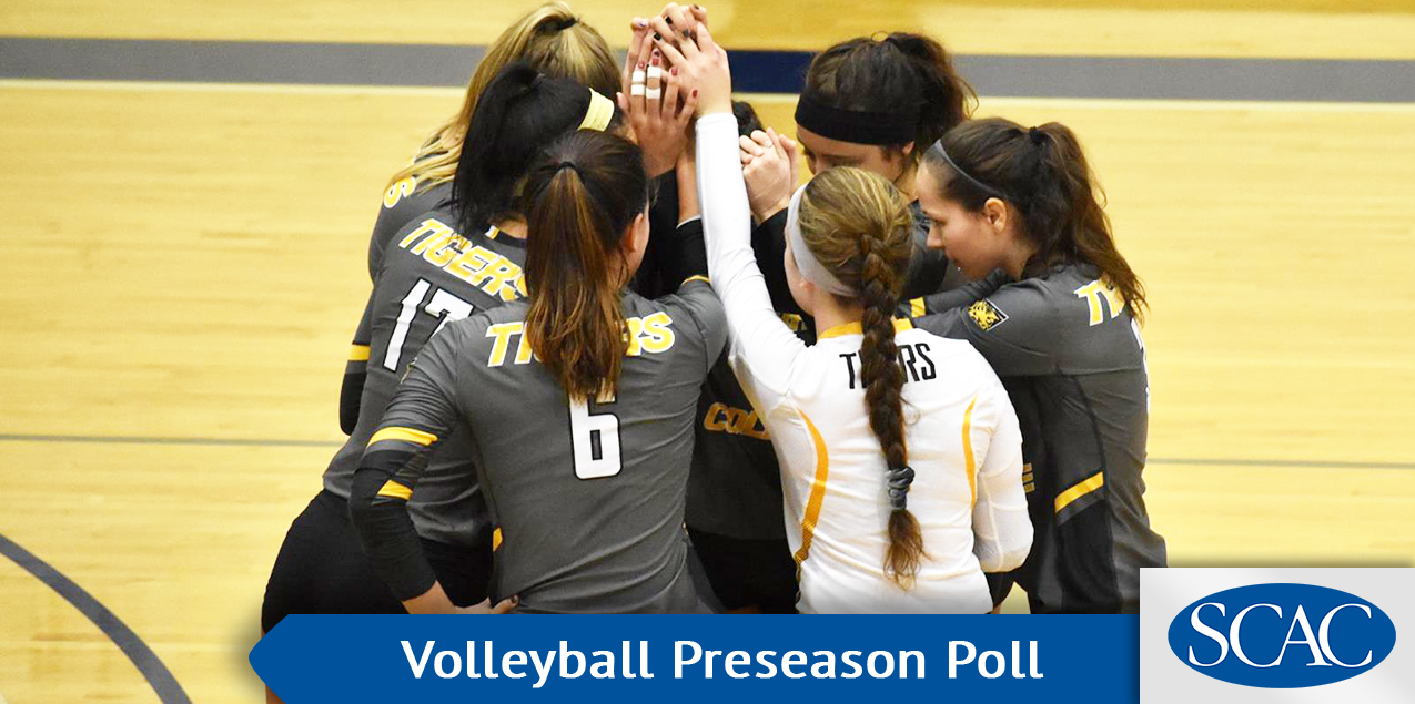 Colorado College Selected As Favorites In SCAC Volleyball