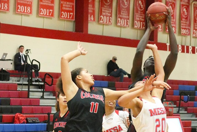 Cochise Uses Outside Shot to Take Down Mesa Women's BBall, 66-49