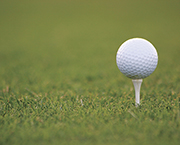 22nd Annual Yellowjacket Golf Classic, June 17 at Willow Creek Golf course