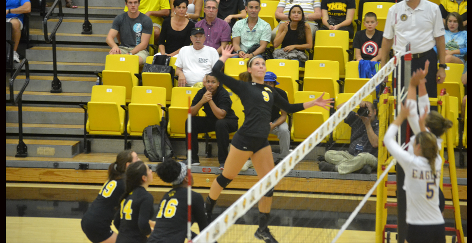 Volleyball Opens AE Volleyball Campaign at Stony Brook Friday Evening