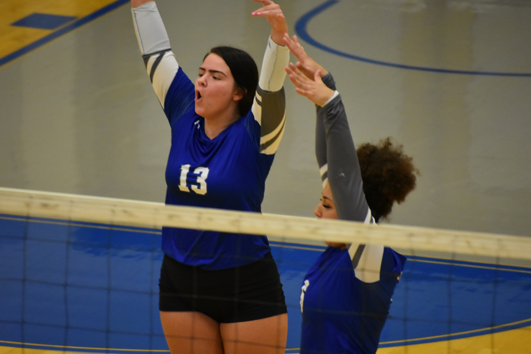 Lakers volleyball sweeps Hawks