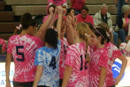 Mont Alto Volleyball Digs Pink