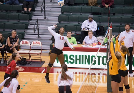 Washington University Sweeps Its Way to UAA Volleyball Championship Match