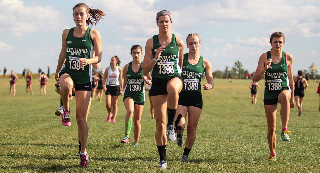 Cross Country Earns NCAA All-Academic Team Honors