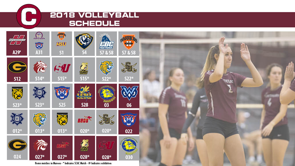 Ladies Volleyball Announces 2018 Schedule