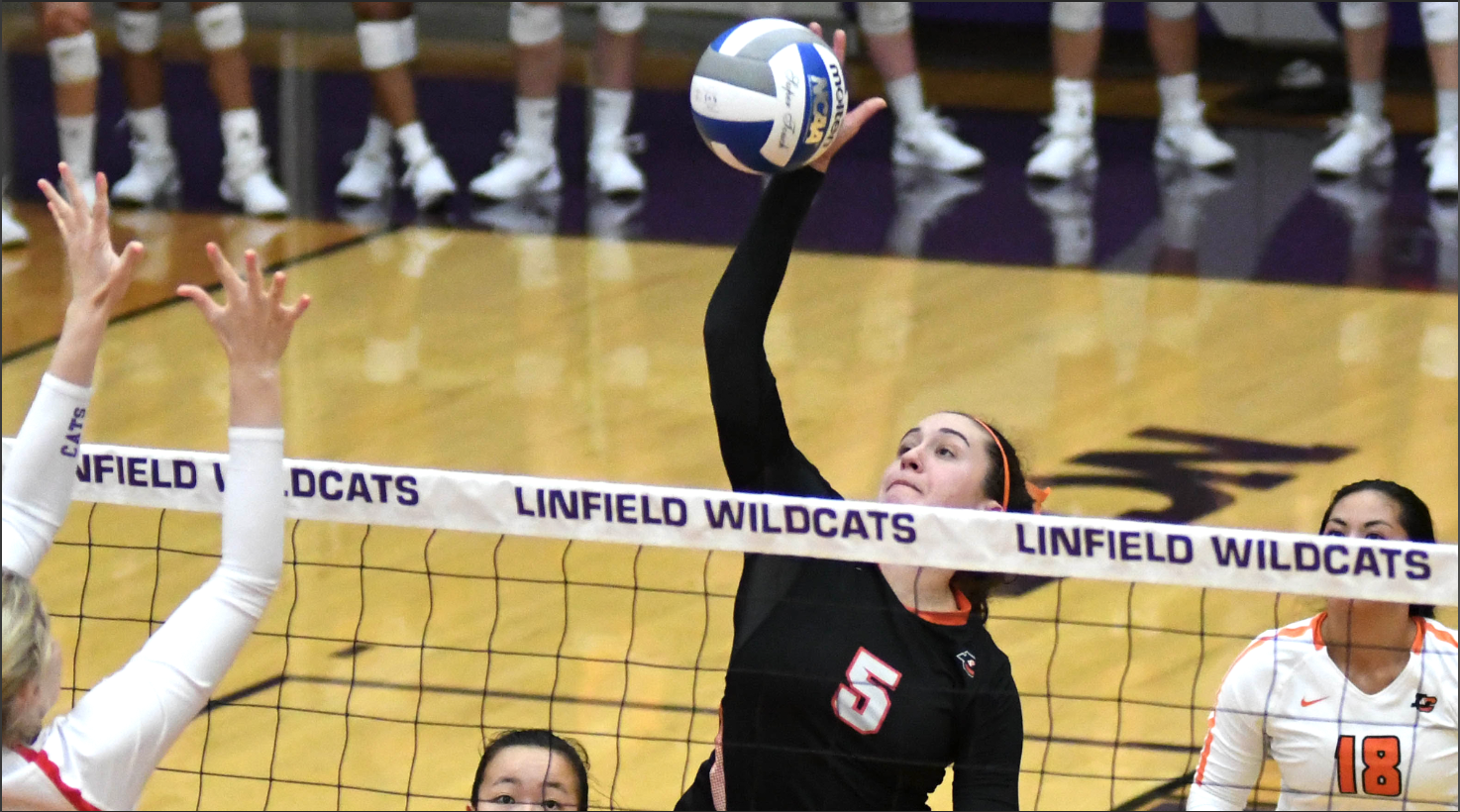 Pioneers come back in a five-set victory